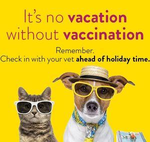 Vaccination reminder