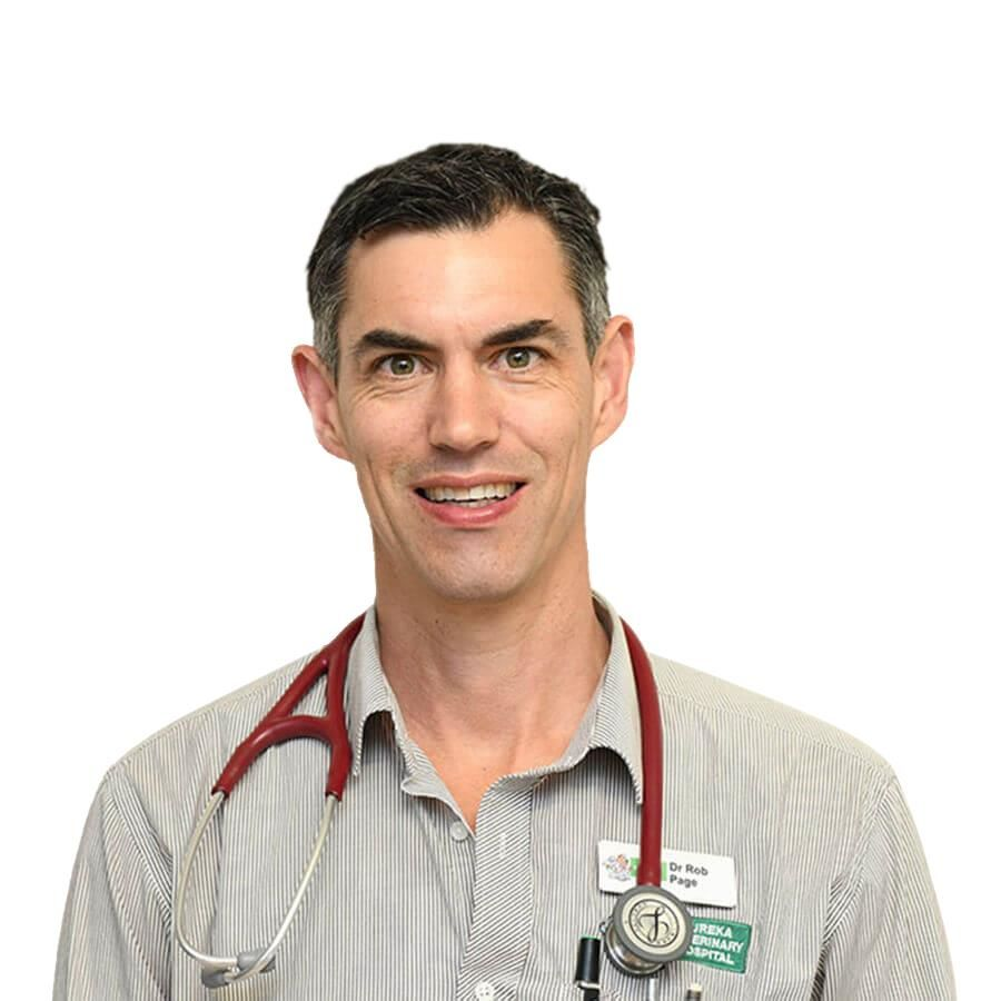 Dr Rob Page